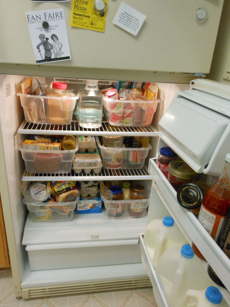 refrigerator bins