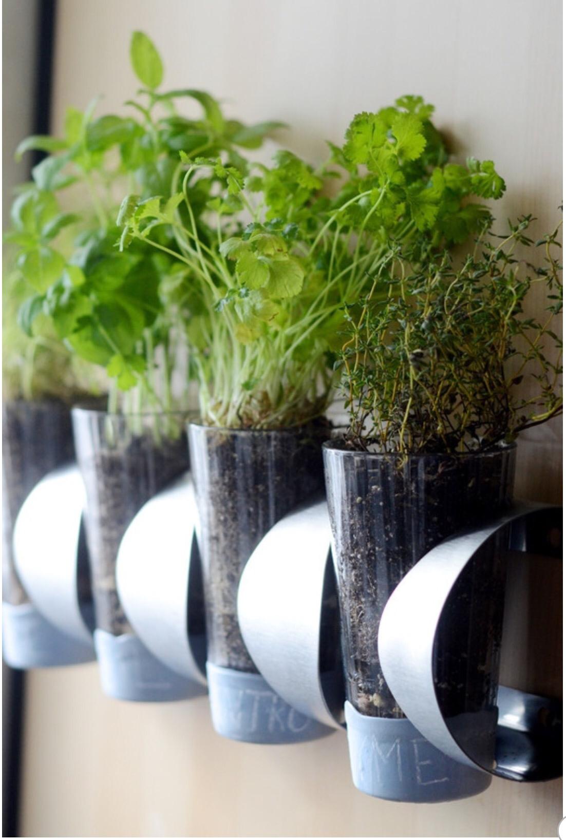 DIY herb garden with IKEA Vurm wine rack Simphome com