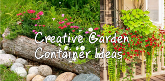 Creative garden container ideas via simphome
