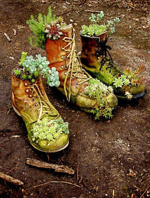 simphome shoe planter