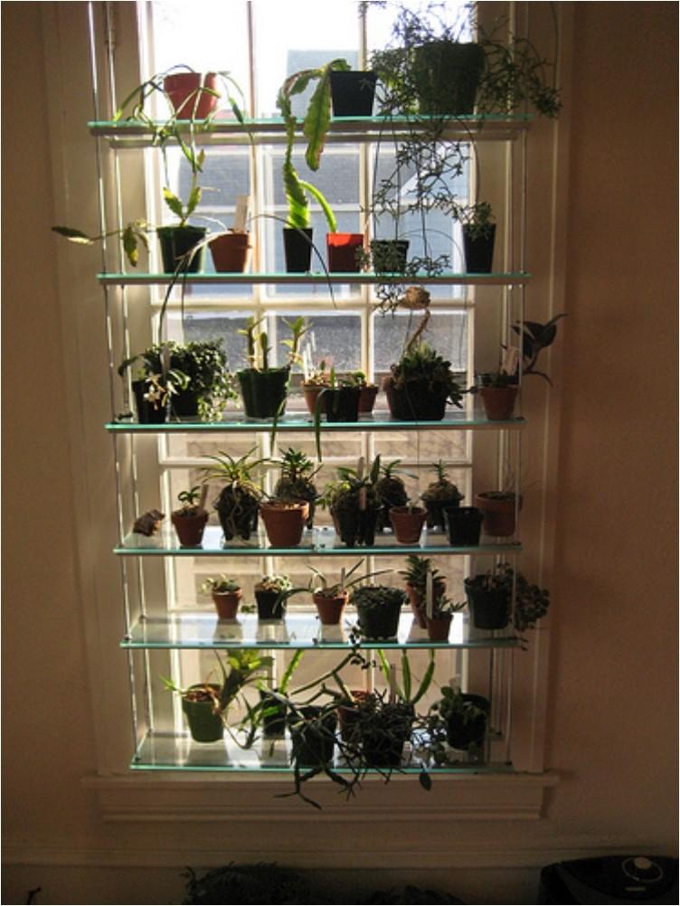 glass window shelving
