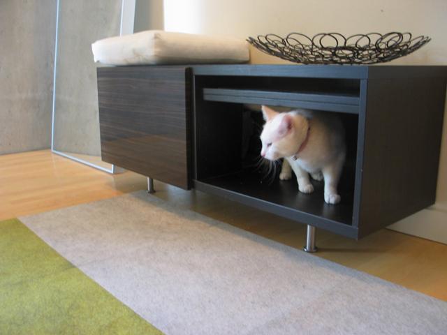 27. DIY Cat Box Cabinet