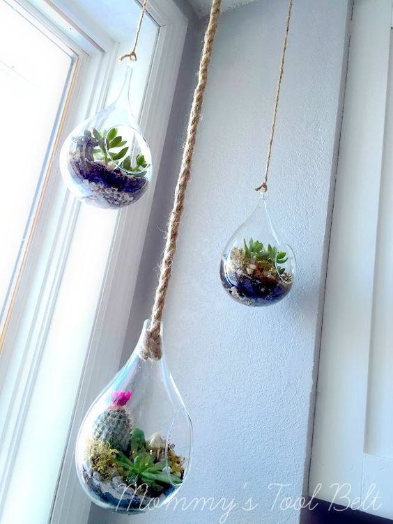 5 Hanging Glass and Plant simphome com
