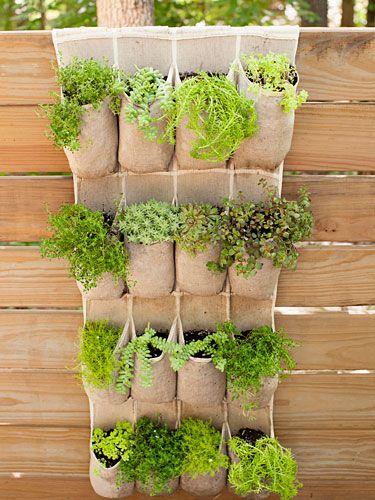 simphome pocket herbs