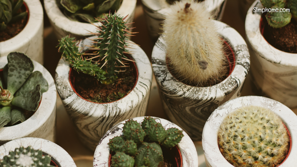 DIY planter ideas simphome.com  1