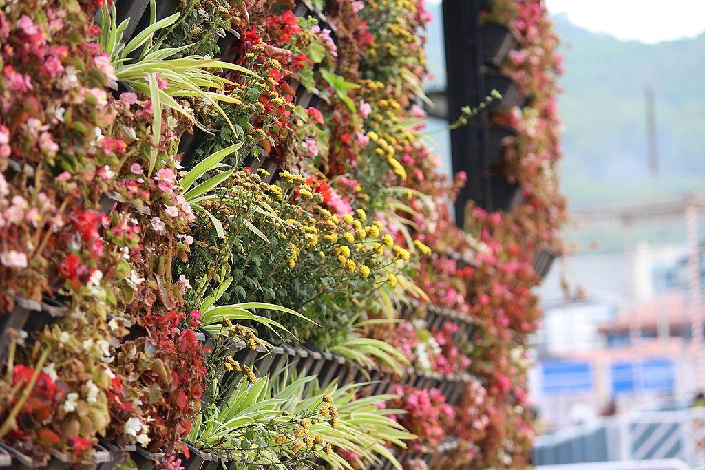 Vertical garden Simphome com