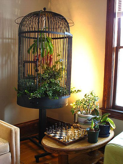 simphome birdcage planter