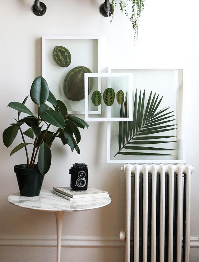 4 DIY Pressed Plant Frame Simphome com
