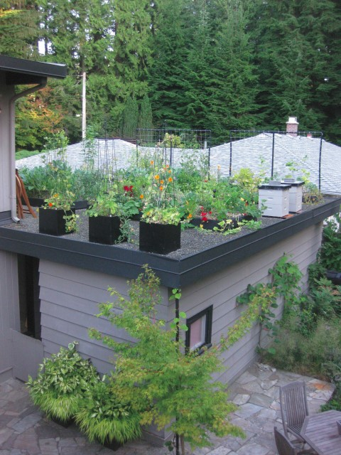 2.Square Planter for Edible Green Roof
