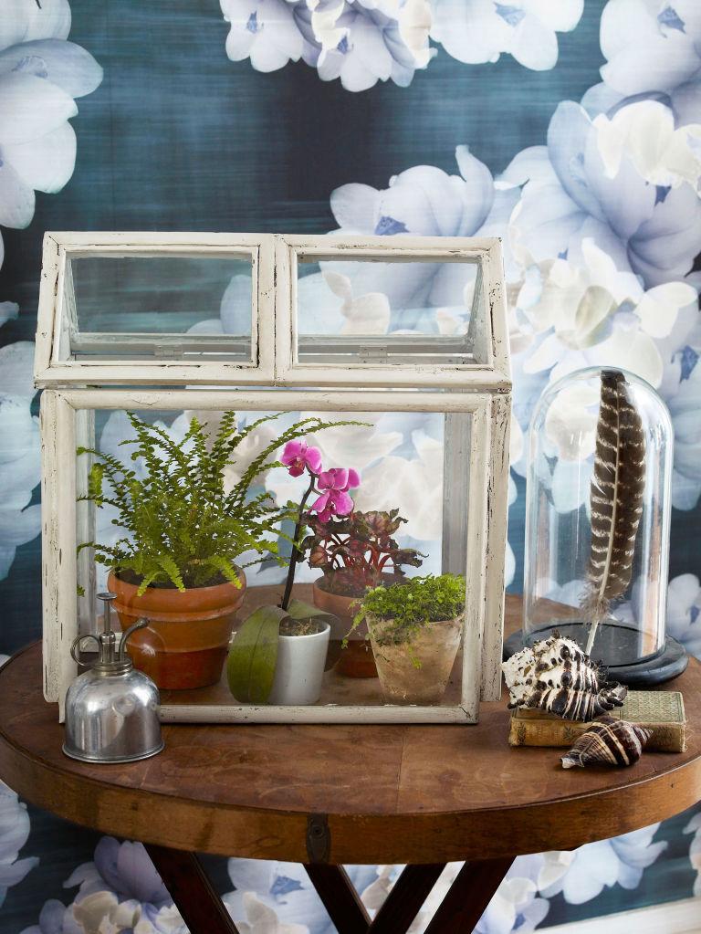 Picture Frame Terrarium via simphome