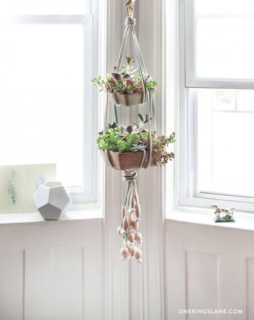 5.Floating Succulent Terracotta Pots