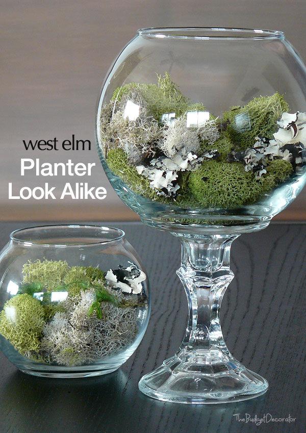 71 West Elm planter and Dollar store Bowl combo via simphome
