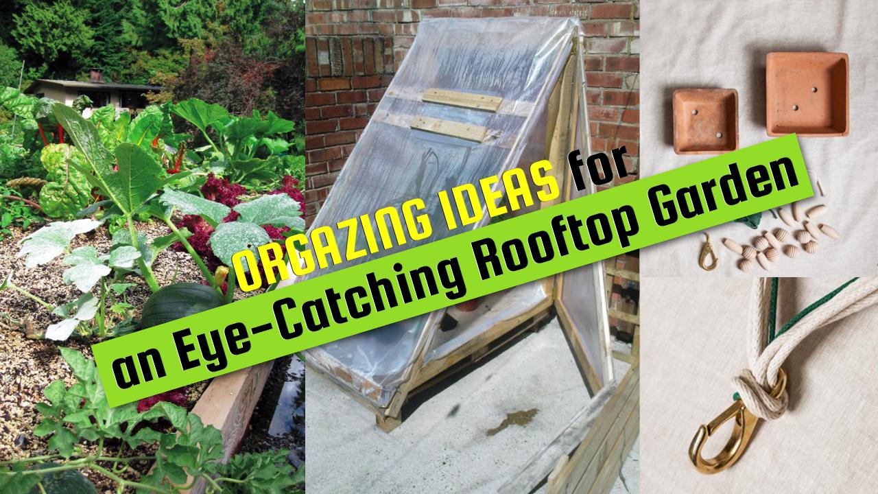 Organizing Ideas for an Eye Catching Rooftop Garden VIA SIMPHOME COM