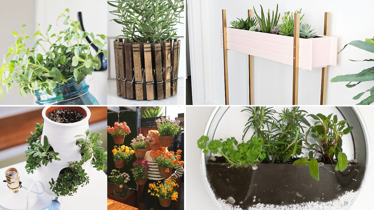 . 10 Clever and Cheap Indoor Garden Ideas   Simphome