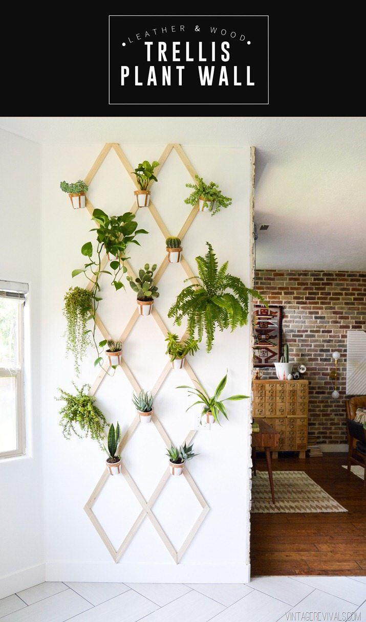 3 Wood Trellis Plant Wall via simphome