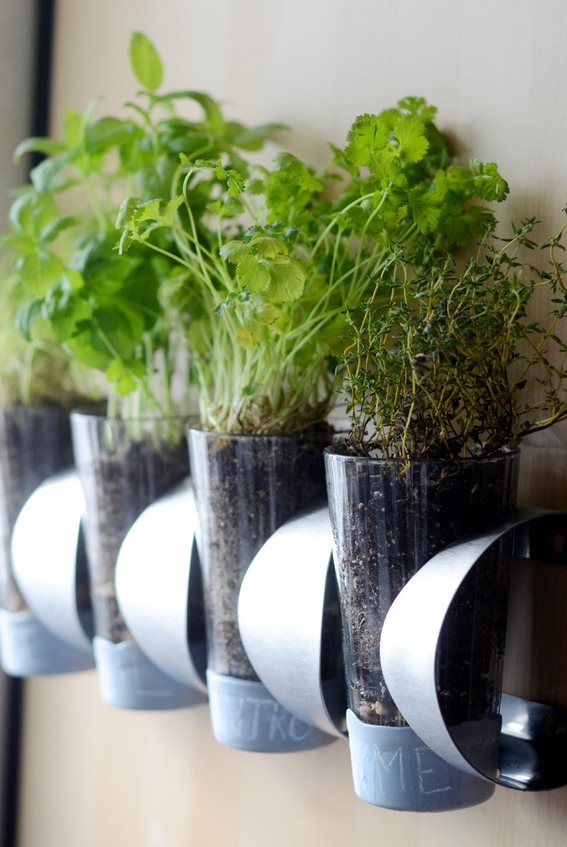 4 Glass Hanging Herb Garden via simphome