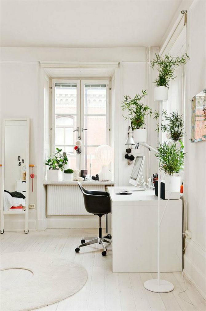 3 Enliven It with Plants via simphome