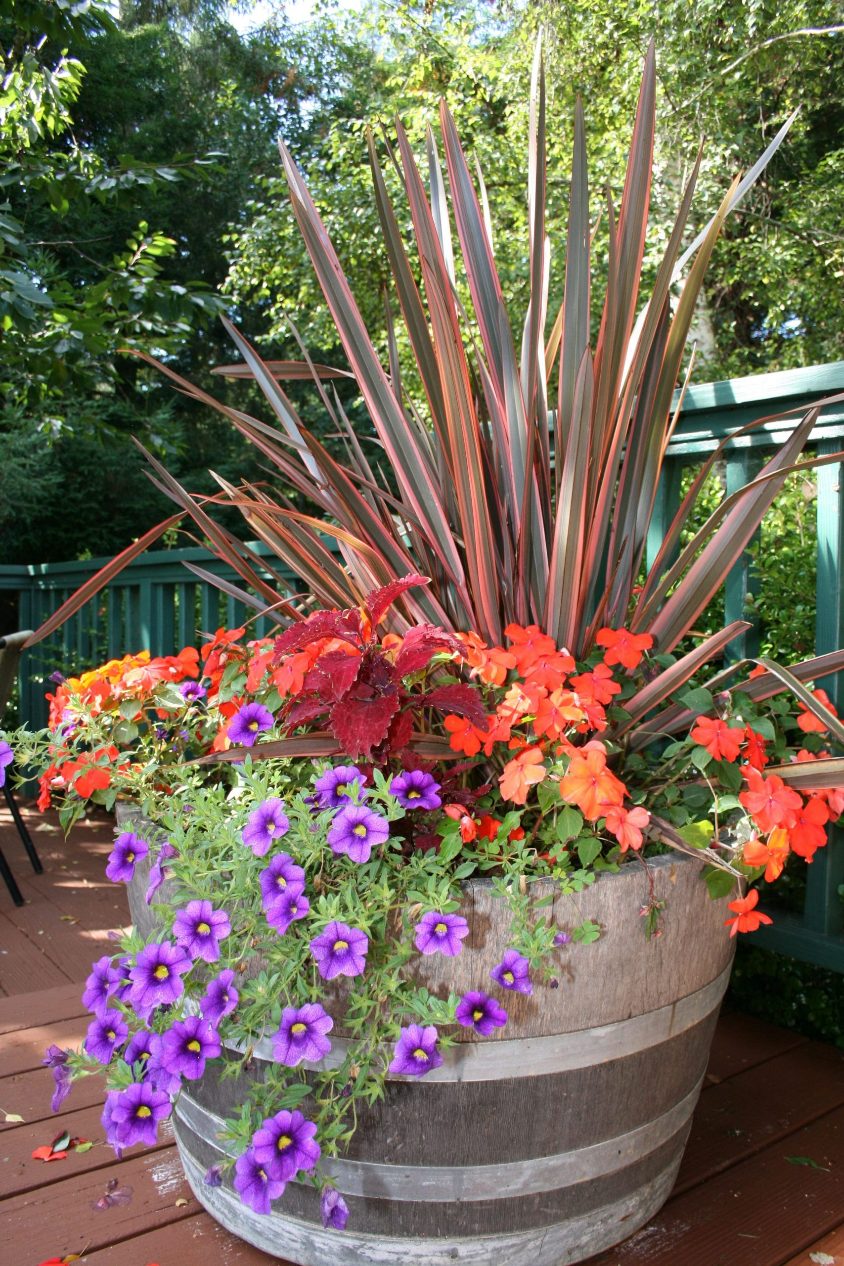 fall color container planting idea north coast gardening intended for 10 plant combination ideas for container gardens awesome and gorgeous