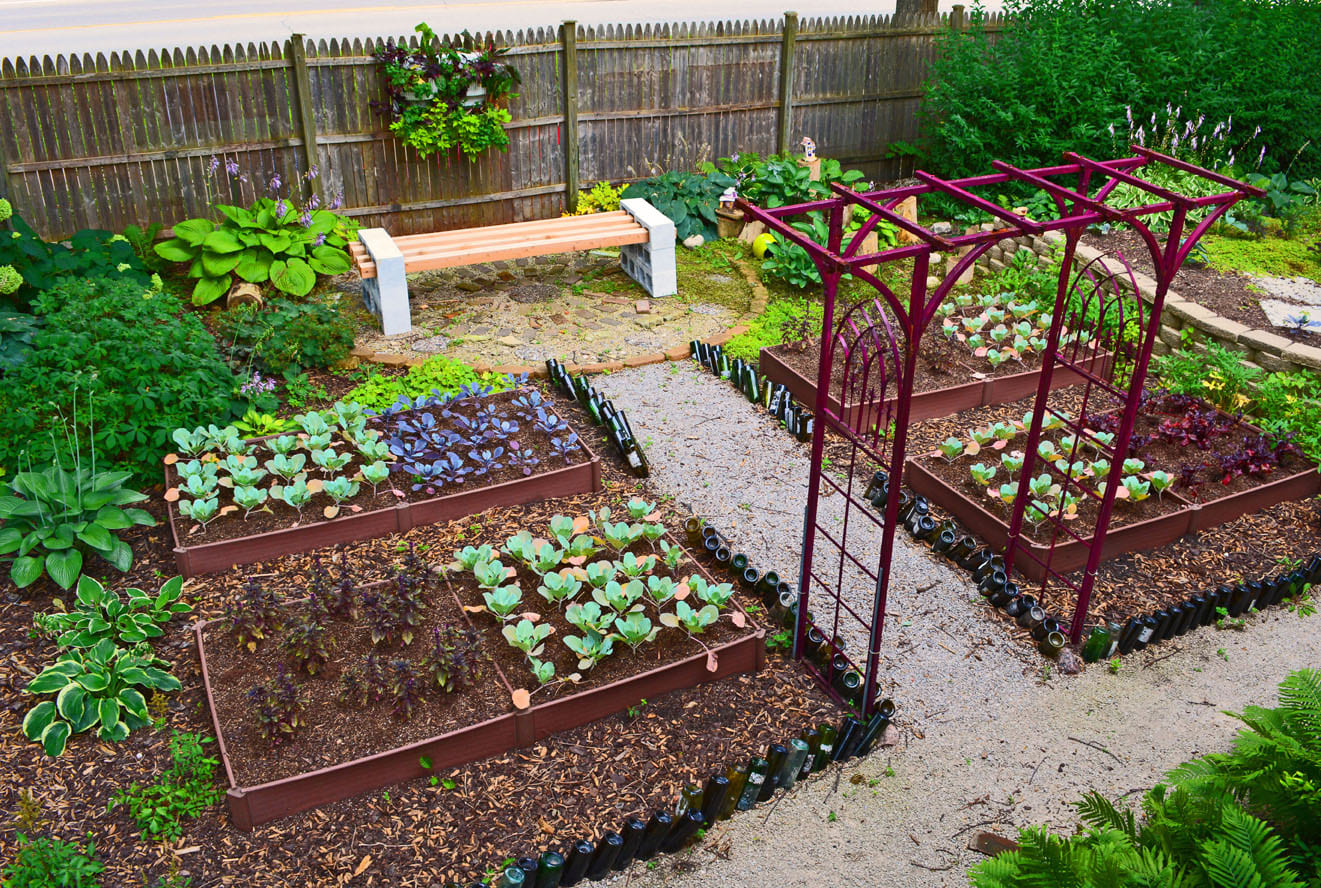 Simphome.com shade garden design technique vegetable color blocking shawna throughout kitchen garden ideas