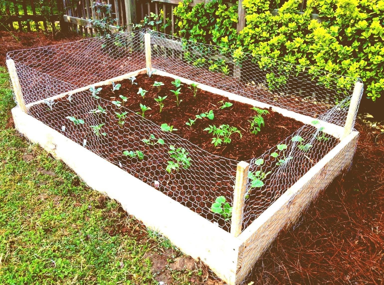 Simphome.com simple kitchen garden ideas throughout 10 kitchen garden ideas most elegant and attractive