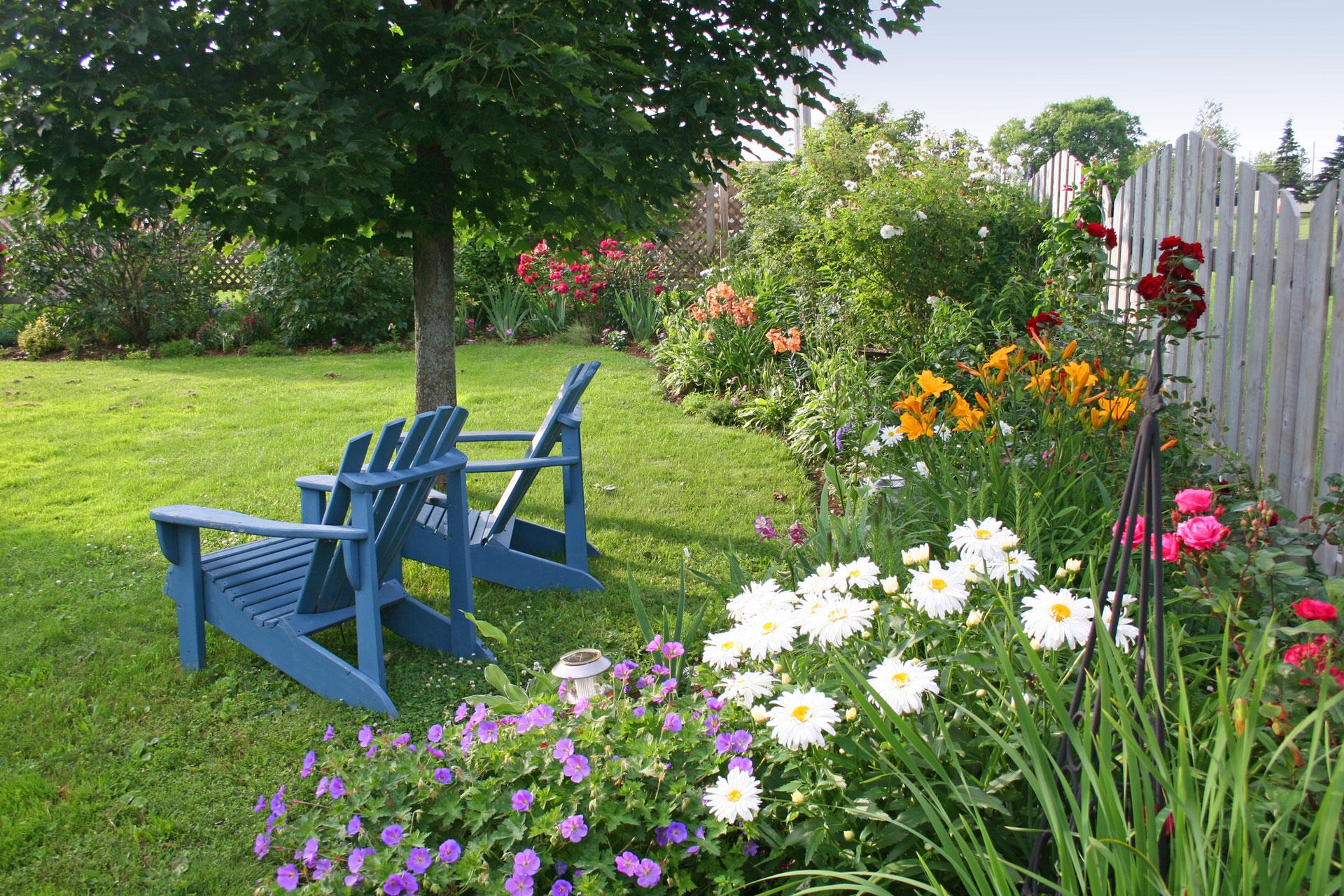 1. Enrich It with Plants via Simphome
