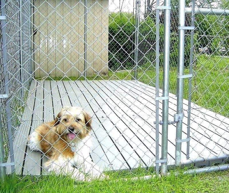 1.SIMPHOME.COM Wide Dog Kennel