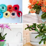 10 Creative Ideas How to Improve Your Indoor with Flowers via SIMPHOME.COM