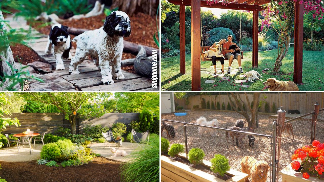 24 Ideas How to Improve Dog Backyard Landscape - Simphome