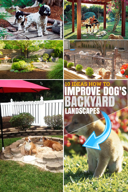10 Ideas How to Improve Dog Backyard Landscape via SIMPHOME.COM Pinterest Featured Image
