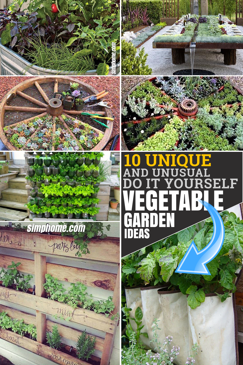 10 Unique and Unusual DIY Vegetable Garden Ideas via Simphome.com Pinterest Featured image