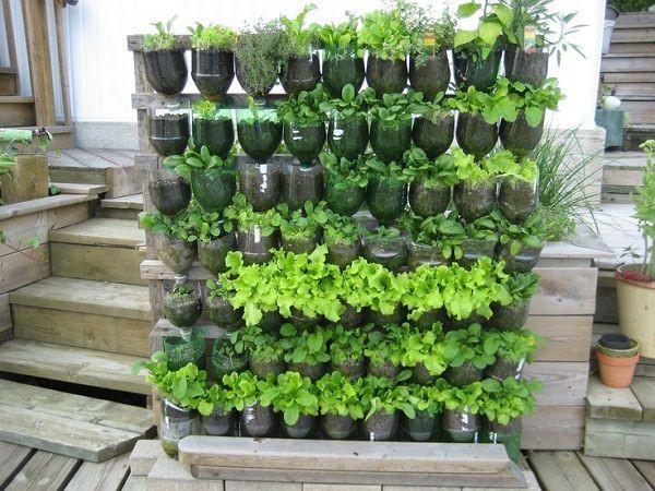 3. Upside Down Bottles project idea via Simphome.com