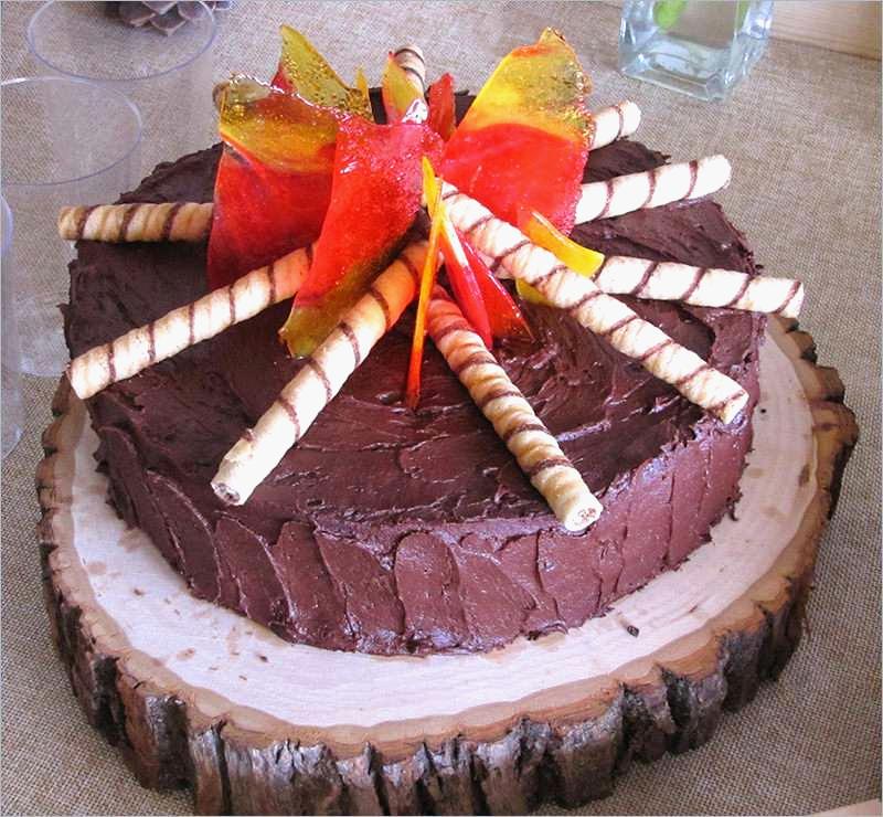 6 Camping Birthday Party Cake via SIMPHOME.COM