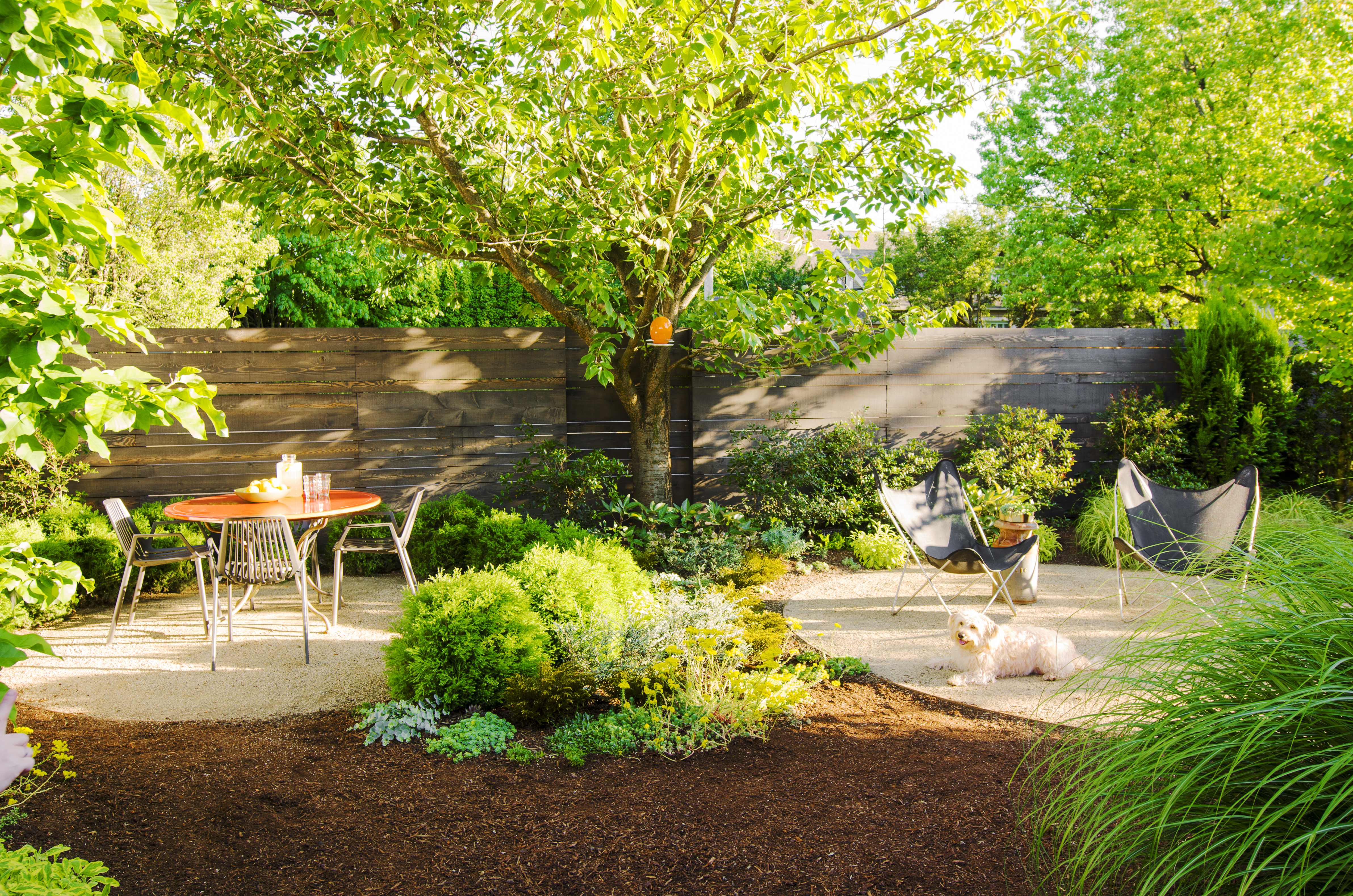 Simphome.com backyard ideas for dogs sunset magazine with dog friendly backyard landscaping