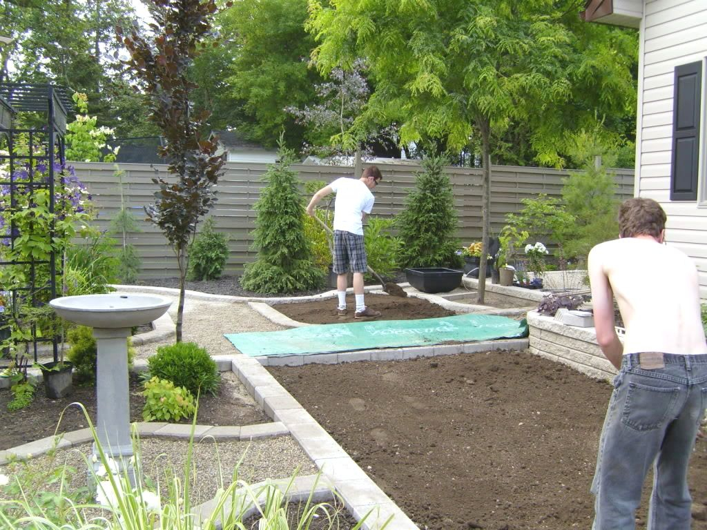 18.SIMPHOME.COM A privacy landscaping ideas for small backyards the garden inspirations