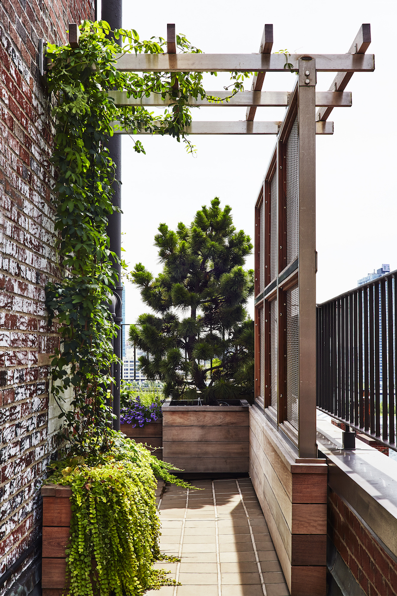 23.SIMPHOME.COM architects secrets 10 ideas to create privacy in the garden and backyard