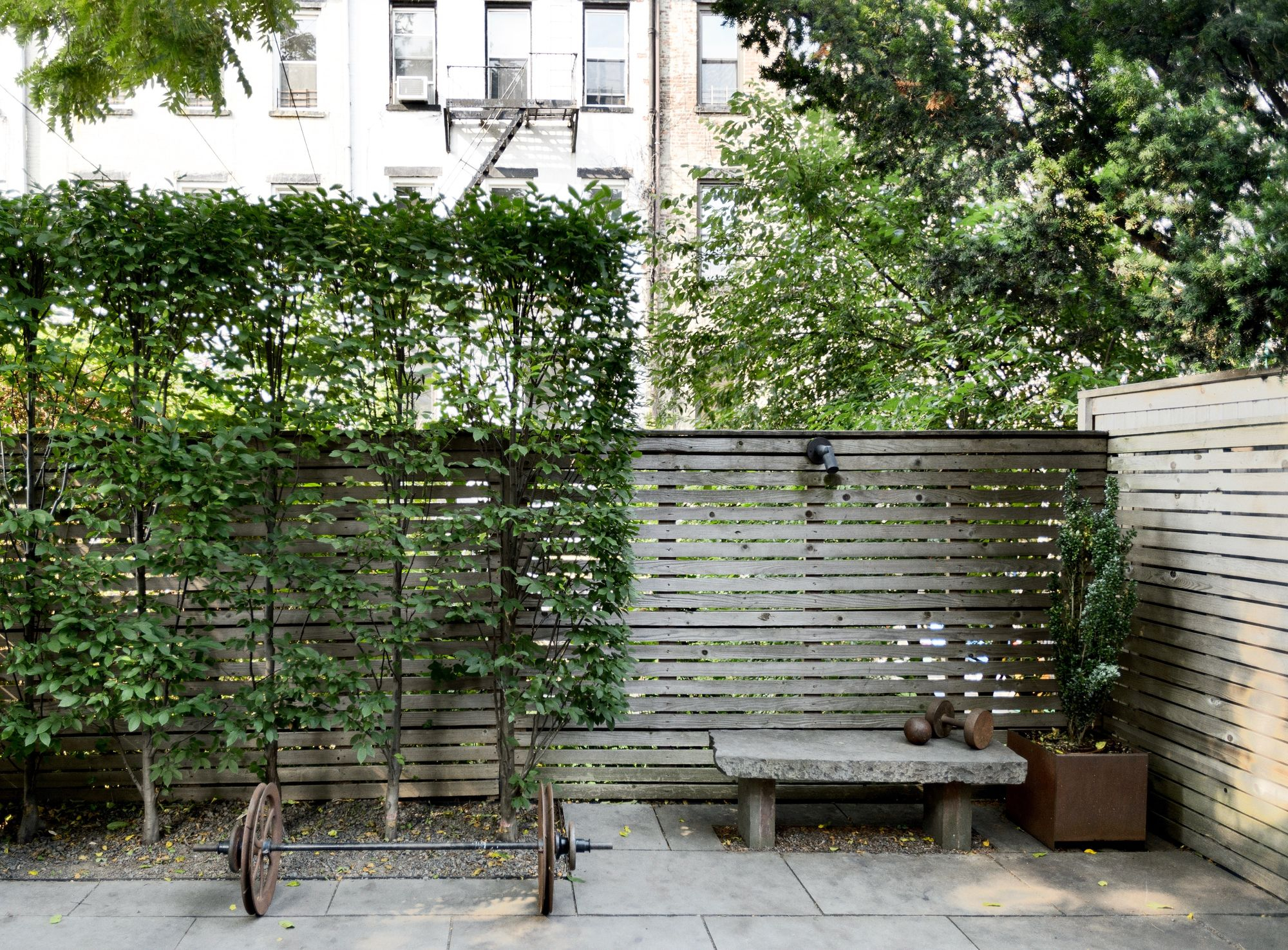 24.SIMPHOME.COM garden hacks 10 ideas for privacy screens gardenista