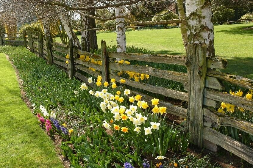 SIMPHOME.COM 10 Tricks How to Upgrade Wood Fence Ideas for Backyard 1.Country Style Wood Fence