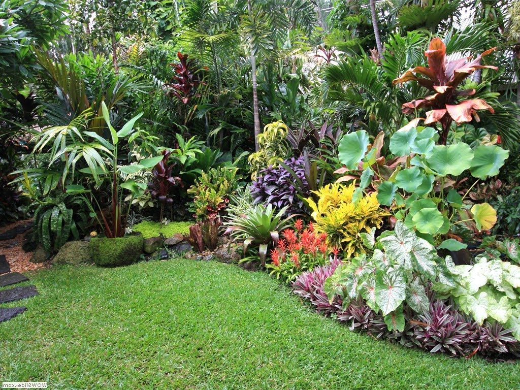 16.SIMPHOME.COM small tropical garden design ideas garden tropical garden design