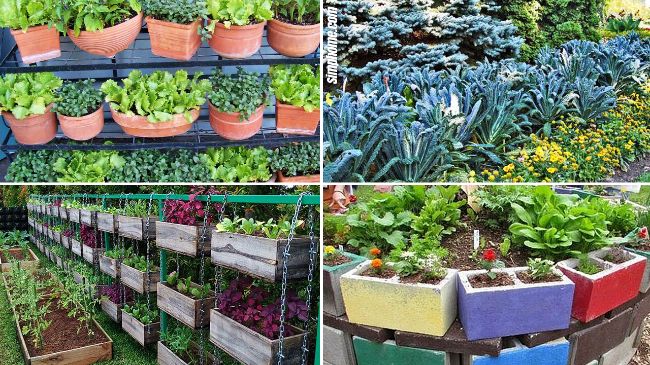 SIMPHOME.COM 10 Backyard Vegetable Garden Ideas Featured