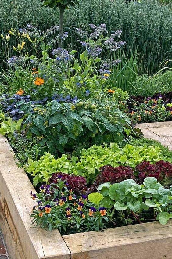 10.Simphome.com A Raised Bed Vegetable Garden