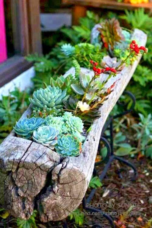 3.Simphome.com Tree Trunk Planter Project idea