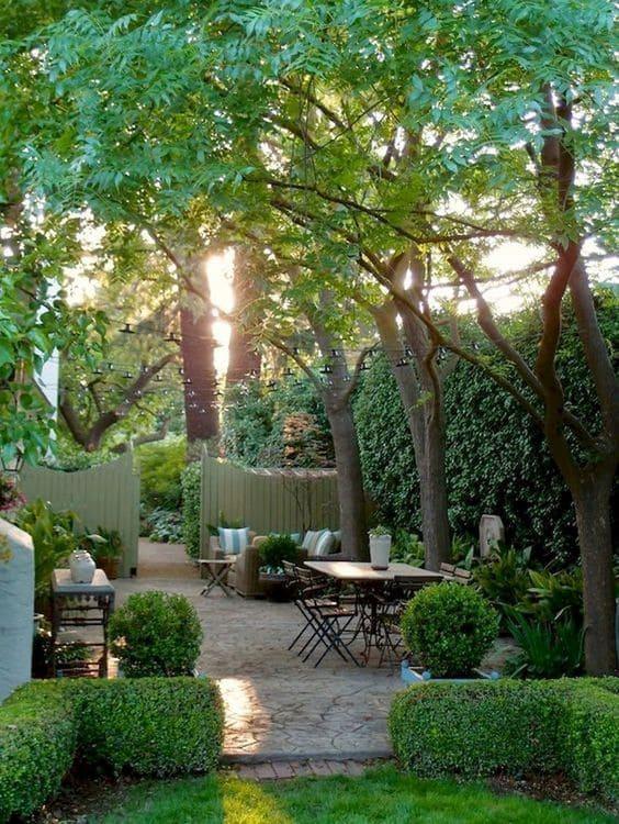 4.Simphome.com Opt for Living Fence