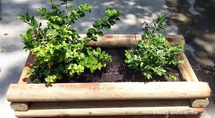 4.Simphome.com Simple Planter Box from Leftover