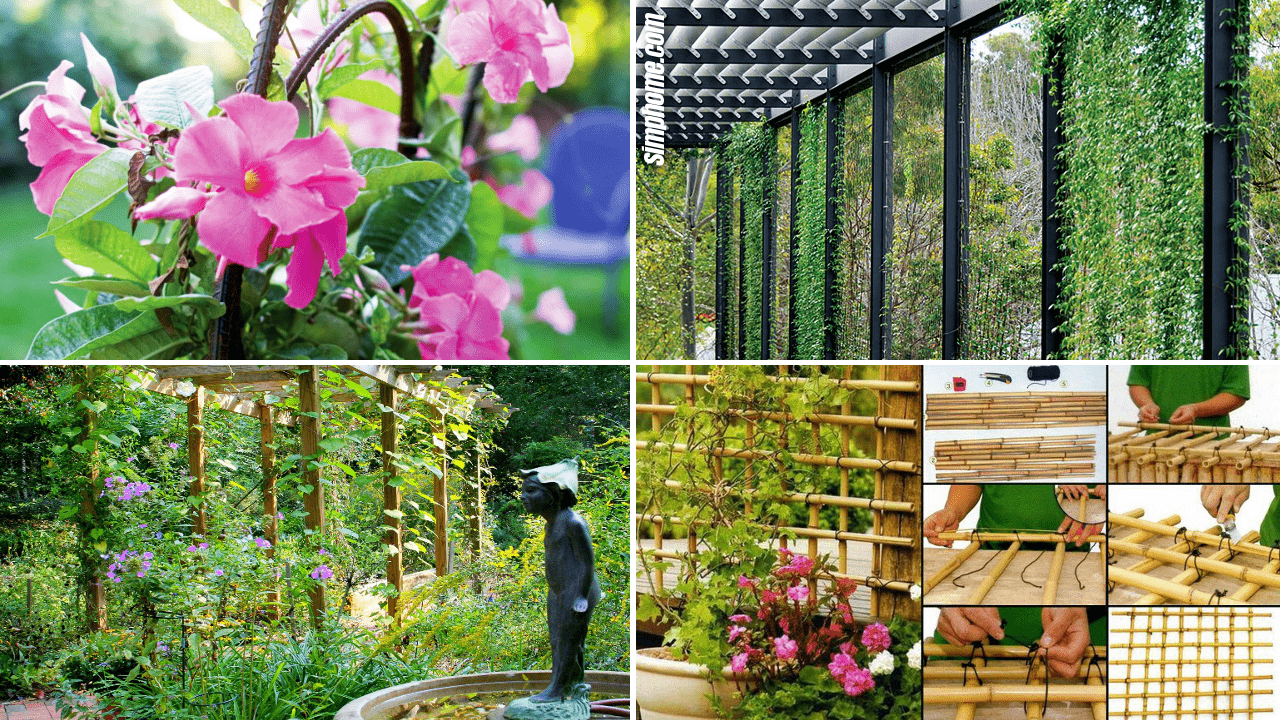 Simphome.com 10 DIY Trellis Ideas for any Garden Featured Image