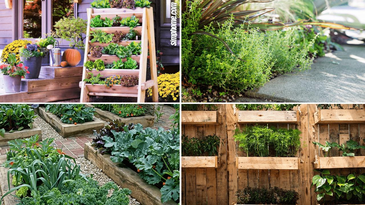 Simphome.com 10 Edible Garden Ideas Featured Image