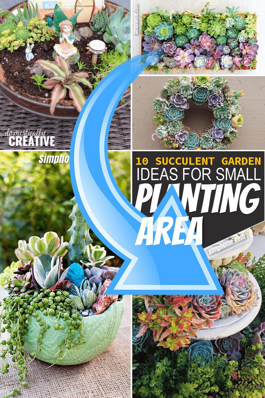Simphome.com 10 Succulent Garden Ideas for Small Planting Area Pinterest Featured image