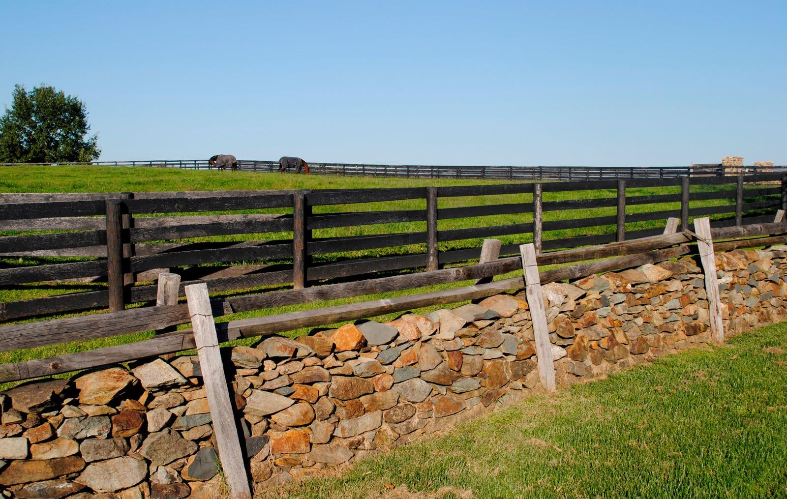 Simphome.com cheap fence ideas for large backyard ducksdailyblog