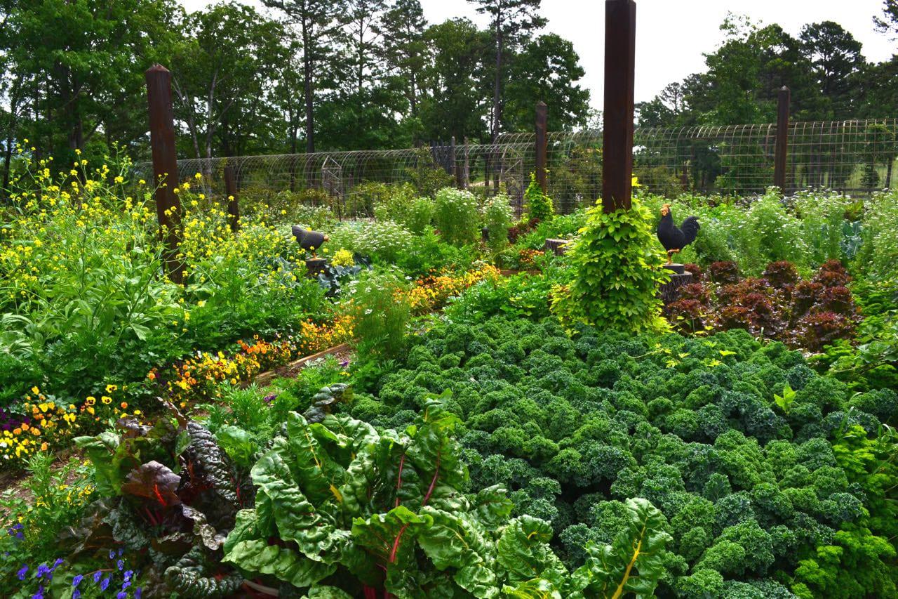Simphome.com design a beautiful edible garden inspiration throughout edible garden ideas