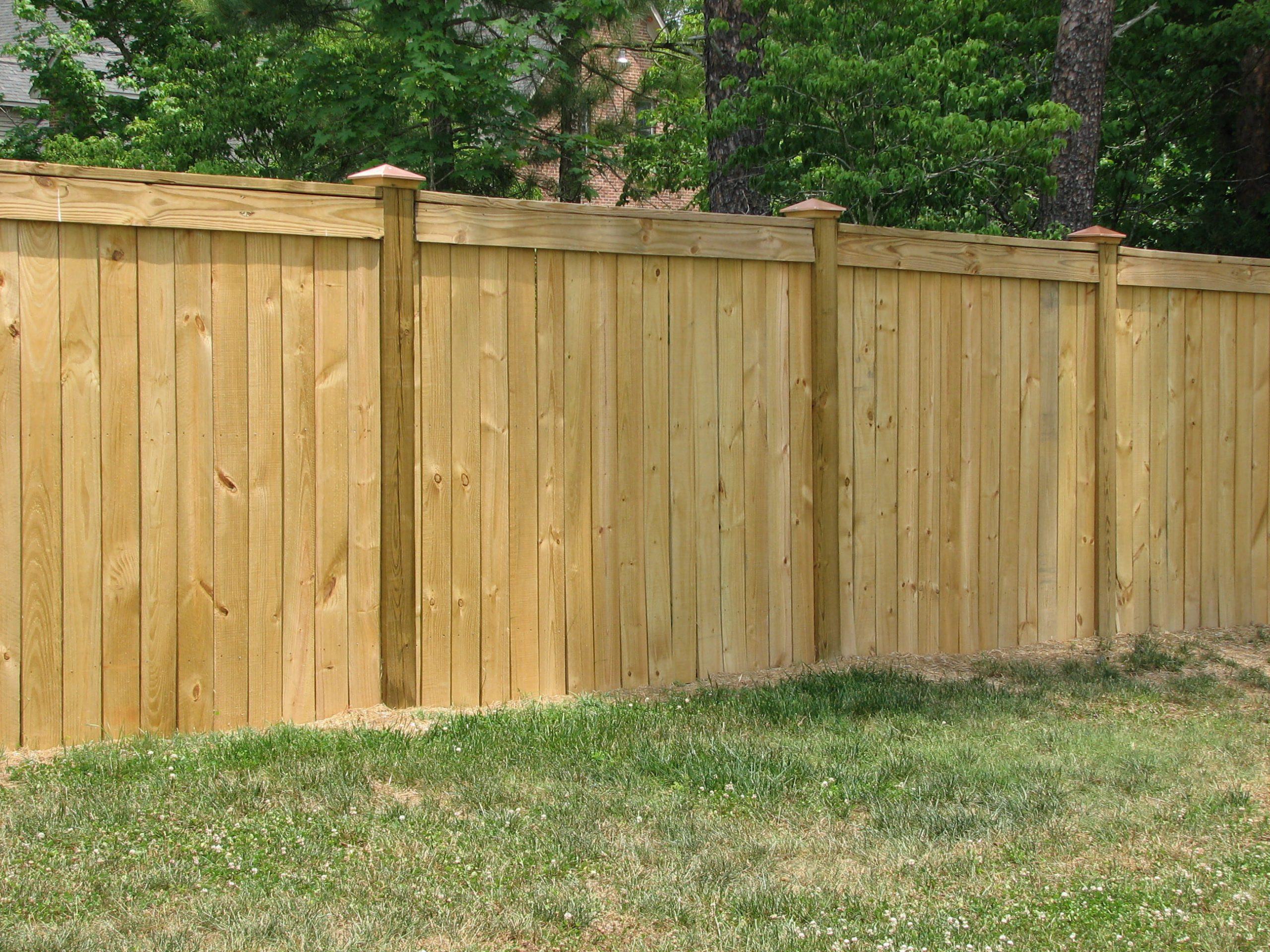 Picture of: 20 Backyard And Garden Fencing Ideas Simphome