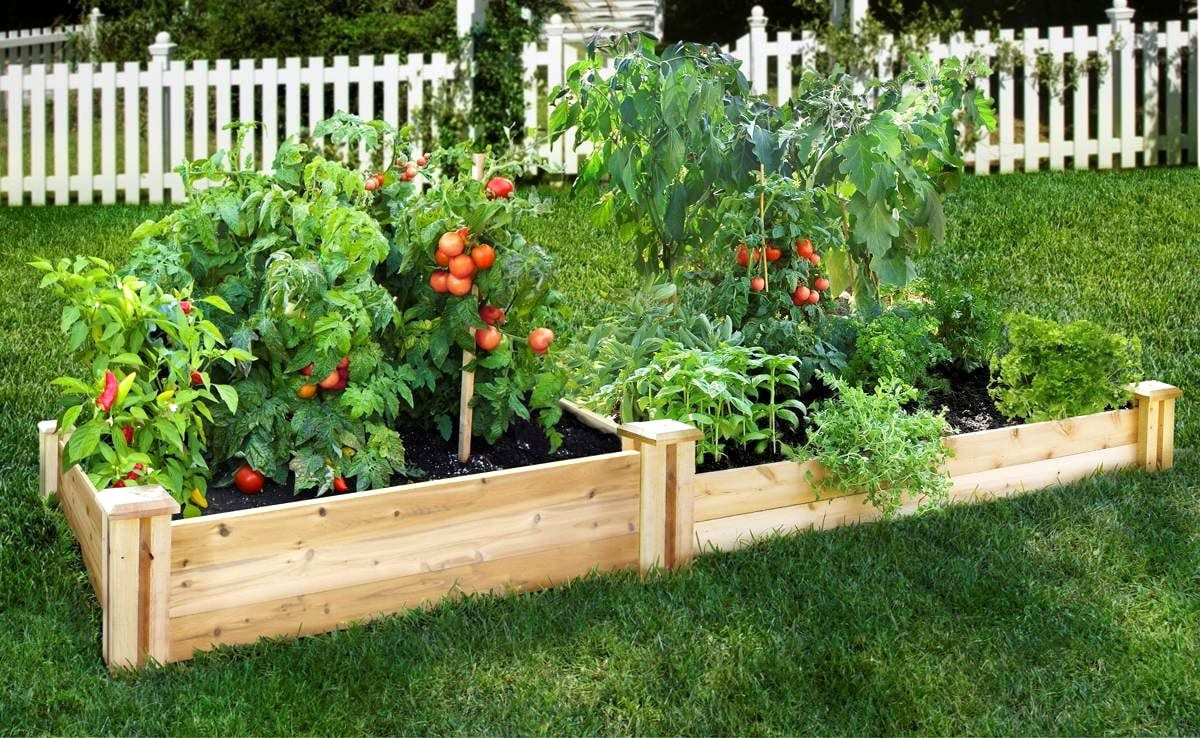 Simphome.com raised vegetable garden with wood box meaningful use home designs inside 10 box garden ideas Image Source meaningfuluse emr.com